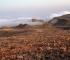Montagne d'Oman (© O.Barge / UMR 5133-Archéorient)