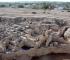Le chantier stratigraphique de Qal'at al-Bahreïn (Bahreïn) (© P. Lombard - Archéorient)